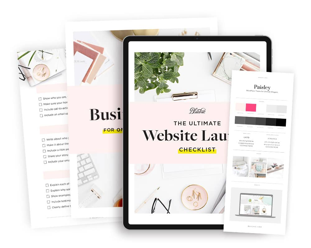 bonus website launch checklist when purchase Paisley WordPress Theme
